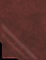 00000-cabernet.png