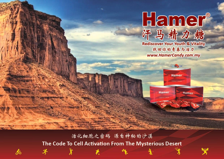 Hamer Candy Information Booklet