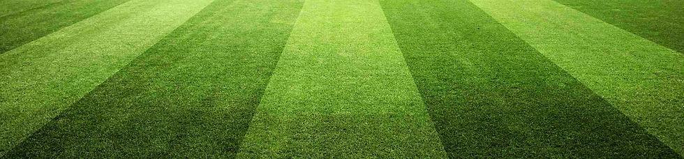[legacyturfpros.com][154]Grass-Mowed2-sc