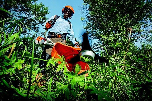 Gartenarbeit mit geborgten und geliehenen Arbeitsgeräten