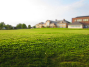 Immobilienkäufer zahlen zu viel Provision