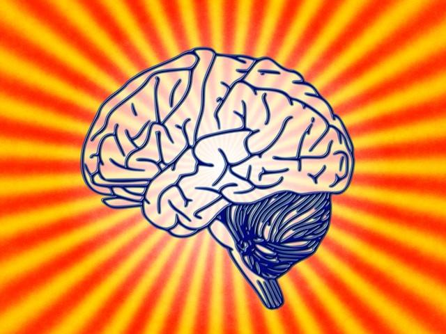 Psychische Erkrankungen / Eintritt in die Berufsunfähigkeit
