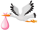 stork pink logo.png