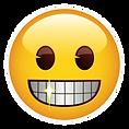 no braces emoji logo.png