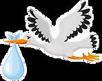 stork blue logo.png