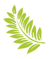 palm leaf logo hawaiian other direction.