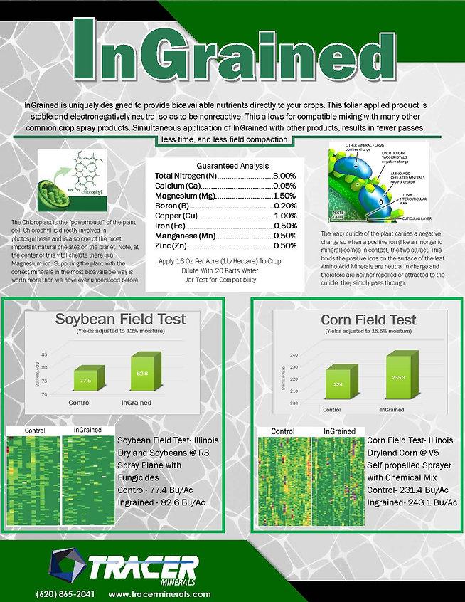InGrained Flyer.jpg
