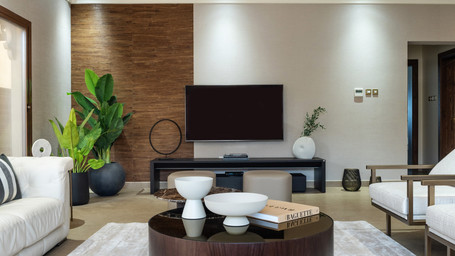 Cannes - TV Room