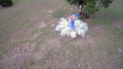 Drone video of baby gender reveal