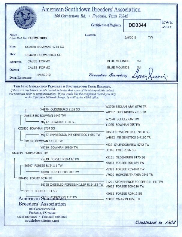 Formo 9016