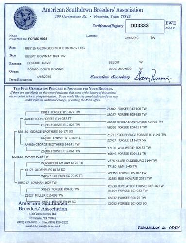 Formo 9035