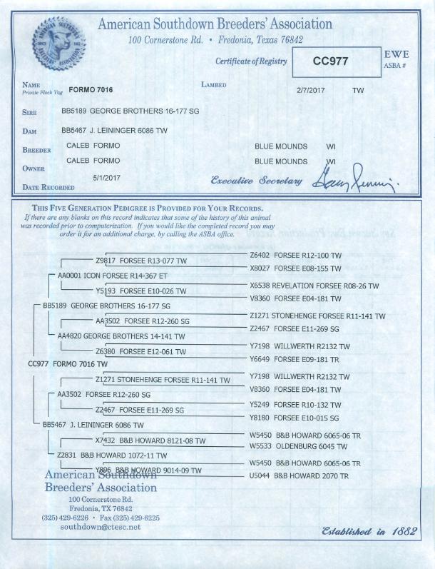 Formo 7016