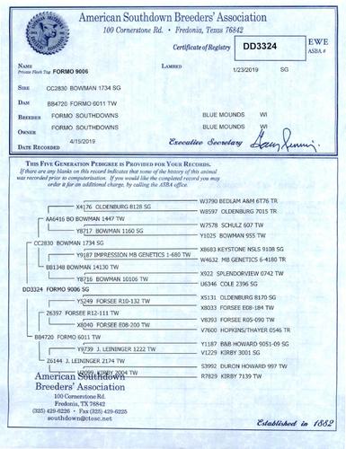 Formo 9006
