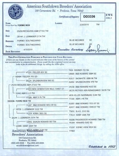 Formo 9038