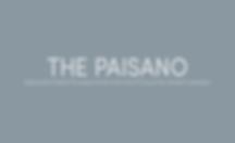 Paisano Intervew.png