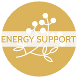 Energy Support - Mark & Text.png