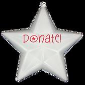 Make a Christmas Donation!