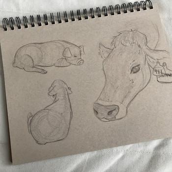 Farm studies #2