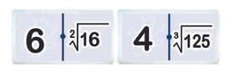 3132 Domino raices