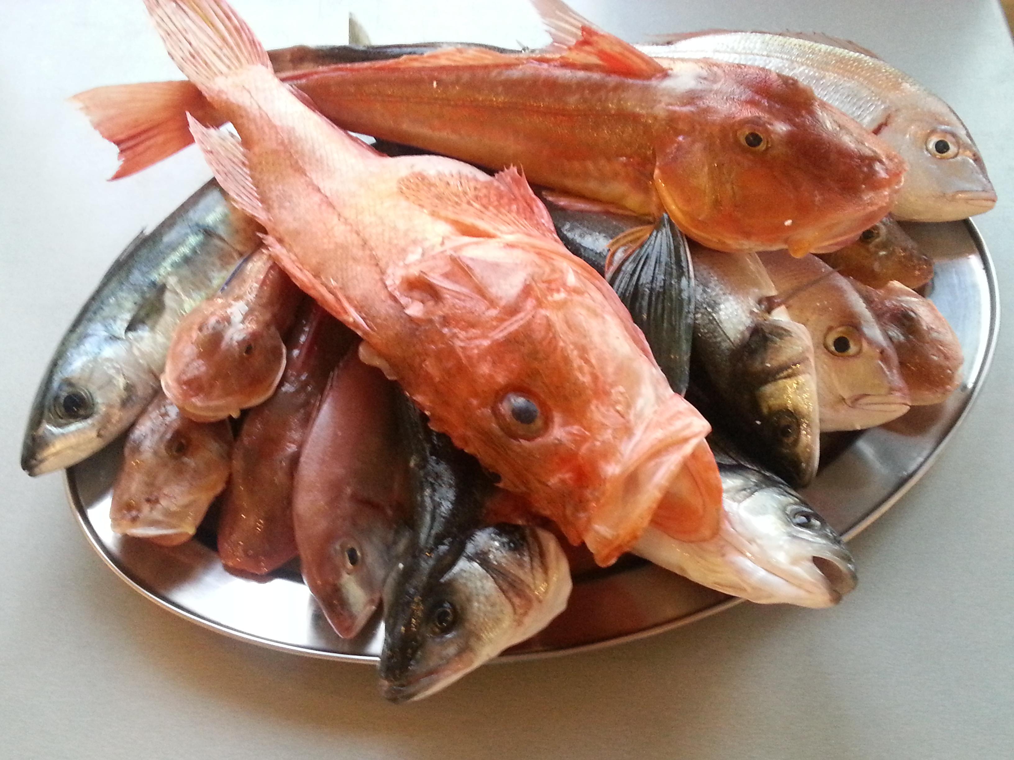 vassoio pesci