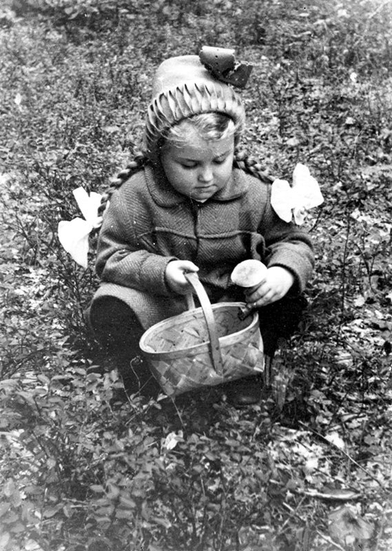 Светлана собирает грибы