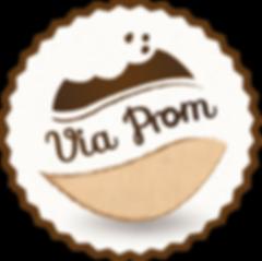 viaprom-logo-design_edited.png