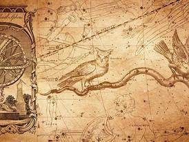 惑星同士の不思議なコラボレーション〜星座交換について