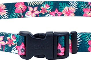Pet Attire Stylish Collars