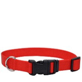 Coastal Tuff Adjustable Collars