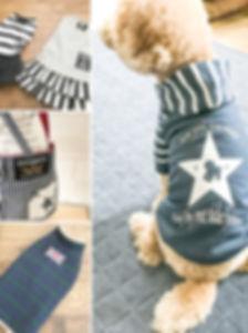 犬服を楽しむための講座