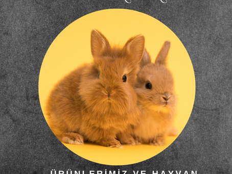 Hayvan Deneyleri ve ürünlerimiz hakkında