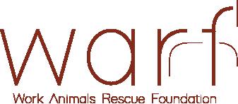 Yük Hayvanlarını Kurtarma ve Koruma Derneği