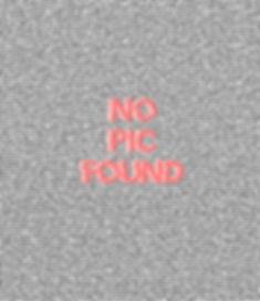 no pic found.jpg