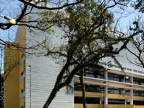 O início do Instituto Realiza Brasil