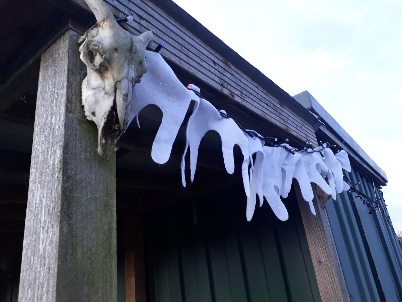 Snow skulls