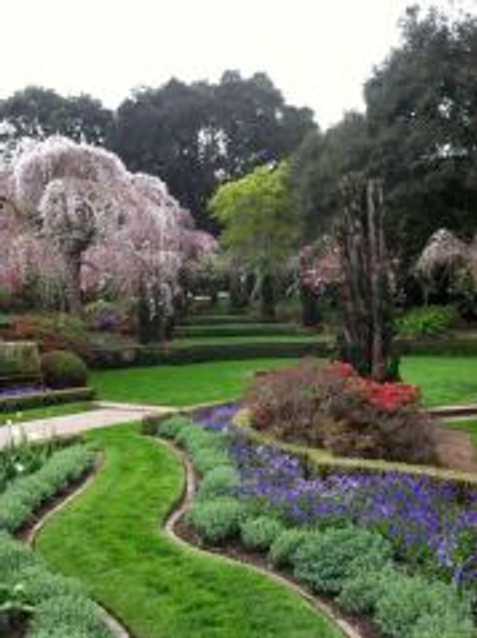 Filoli grounds
