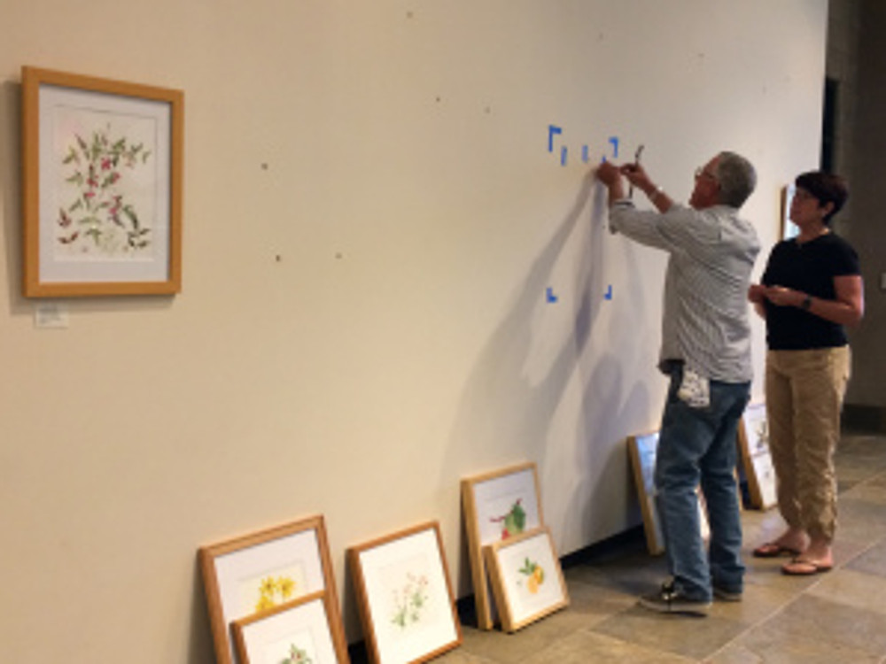 Andrew Mitchell (left) and Janice Sharp (right) mark the wall for hanging the paintings.
