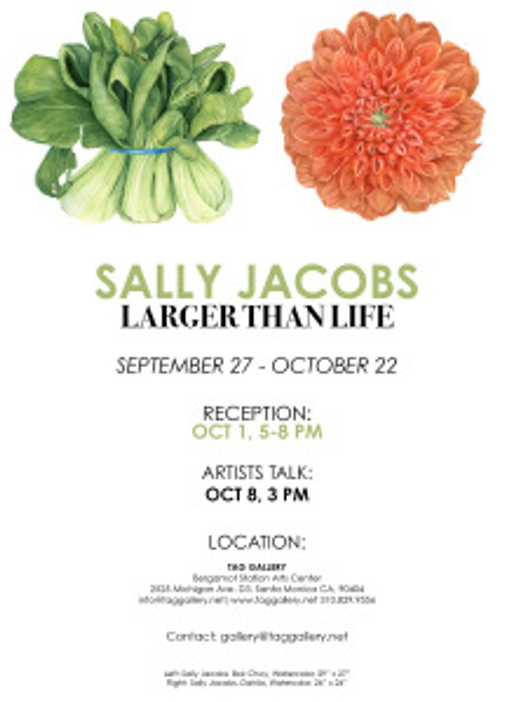 E-invite for Sally Jacobs exhibition, Larger than Life at TAG Gallery.