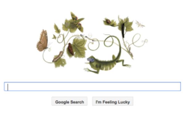 Image of Google's Doodle to Maria Sibylla Merian's 366th Birthday.