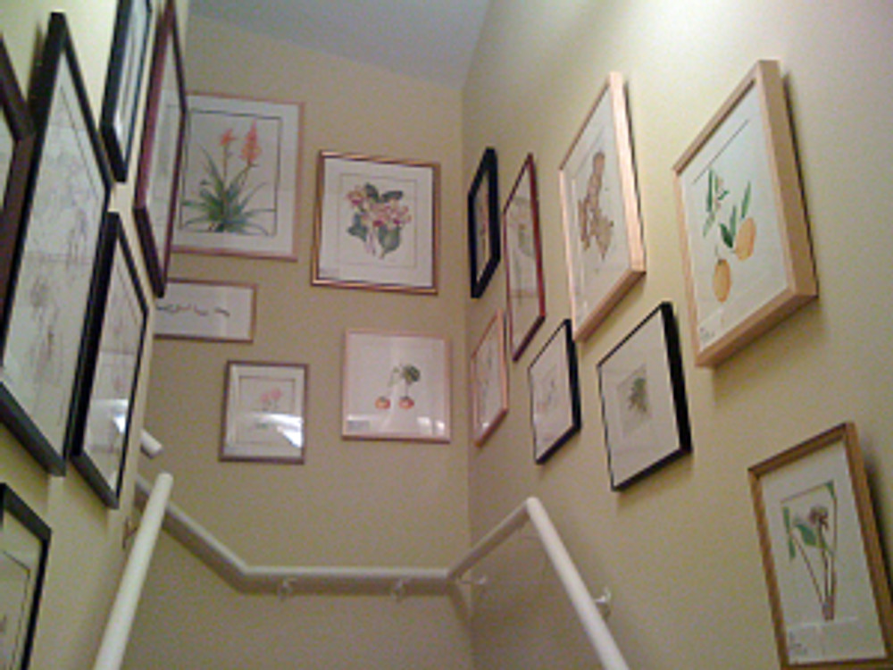 BAGSC Artwork hung for the Pasadena Holiday Look-In Home Tour