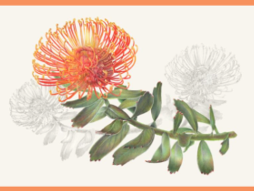 American Society of Botanical Artists and The Horticultural Society of New York Open the 18th Annual