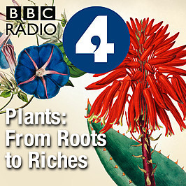 A Great Podcast Series from Kew Gardens about Plants