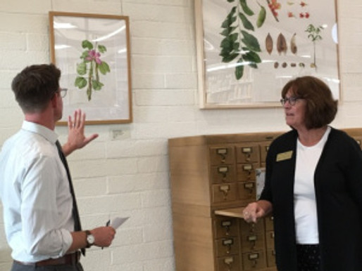 The Botanical Artists Guild of Southern California Celebrates 20 Years of Painting