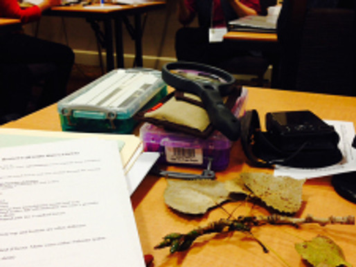 More from the ASBA Conference: Carol Govan's Botany Workshop