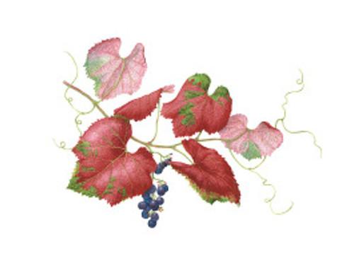 BAGSC Workshop–Leaf Detail: Start to Finish, Veins and Edges, with Lee McCaffree