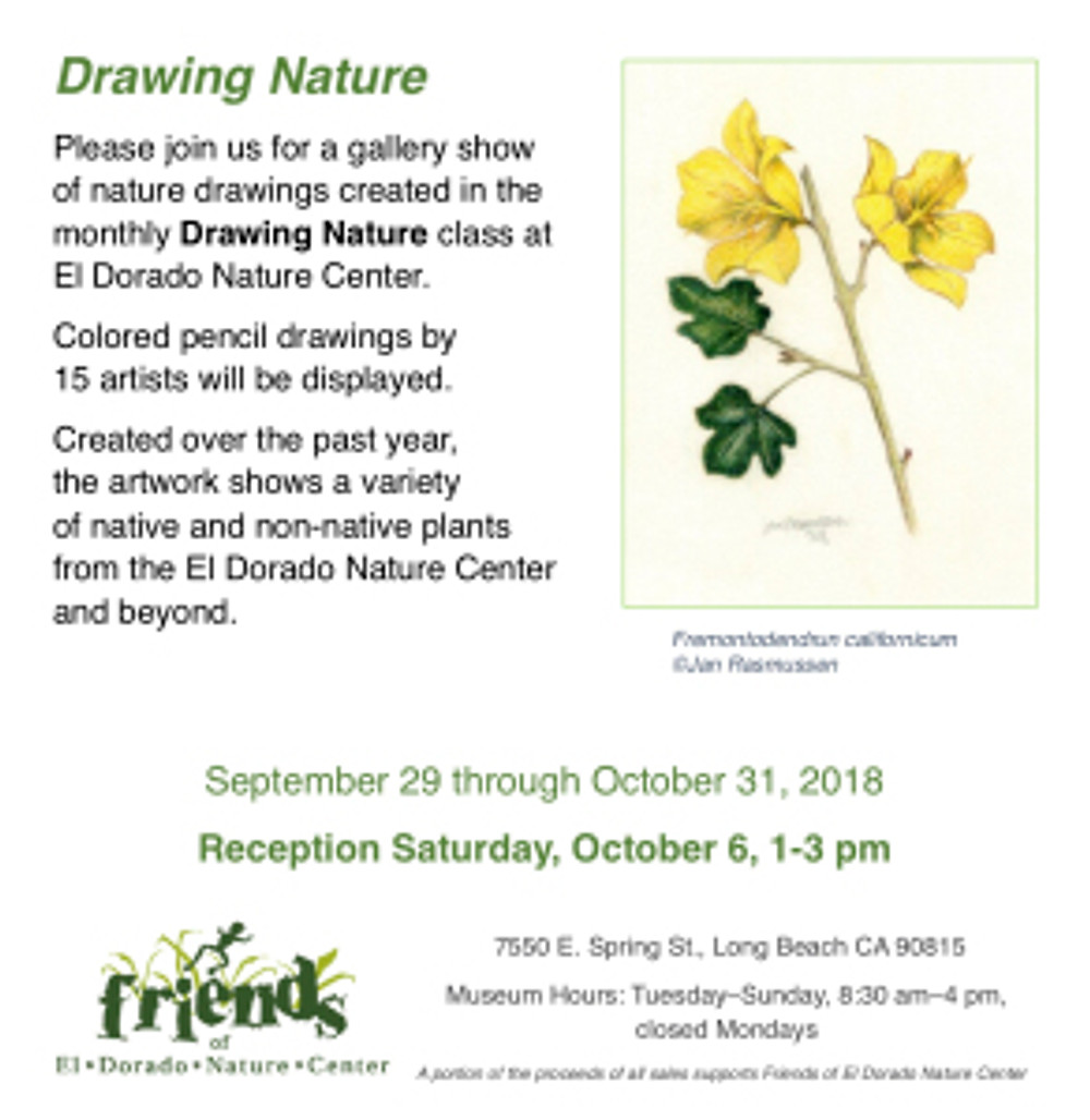 """Flyer for """"Drawing Nature"""" exhibition in Long Beach, California."""