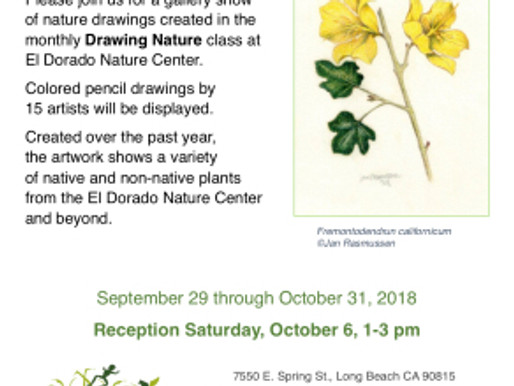 """""""Drawing Nature"""" Colored Pencil Exhibition"""