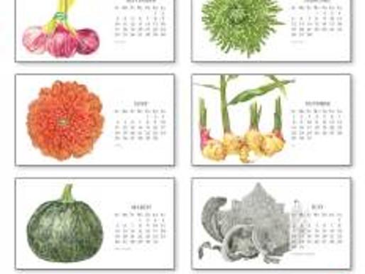 Sally Jacobs' Botanical Art Calendar Available for Holiday Gift Giving