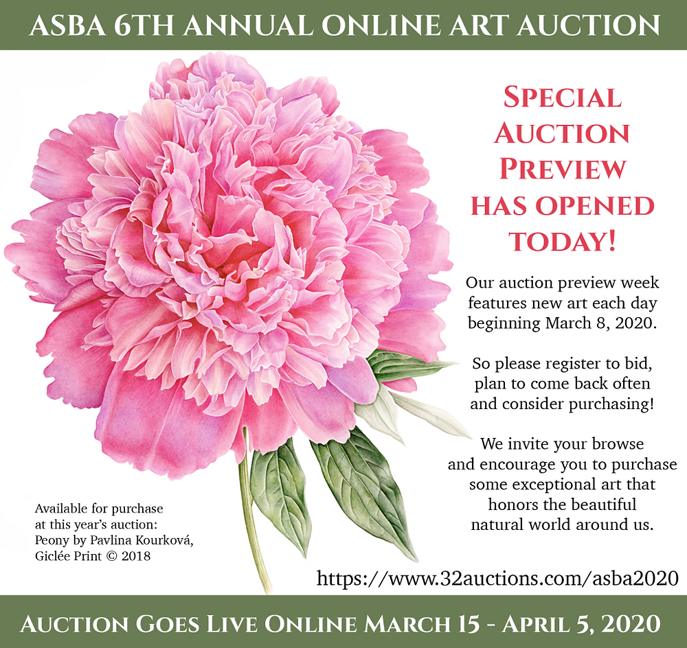ASBA 6th Annual Online Auction