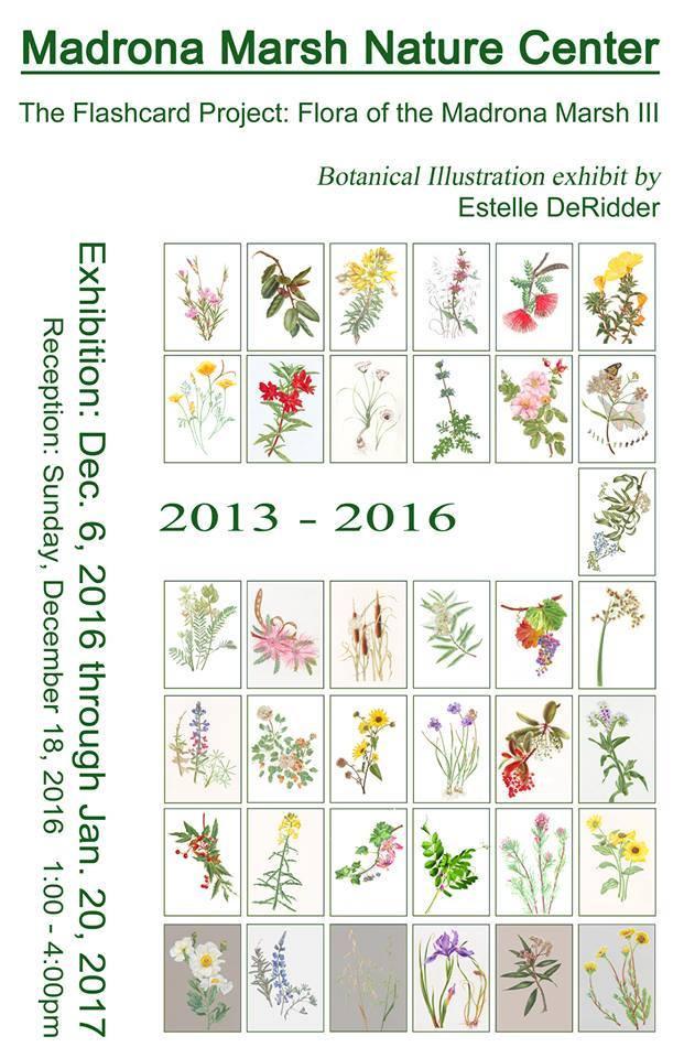 Invitation for Estelle DeRidder's Madrona Marsh Nature Center Exhibition, © 2016, Estelle DeRidder.